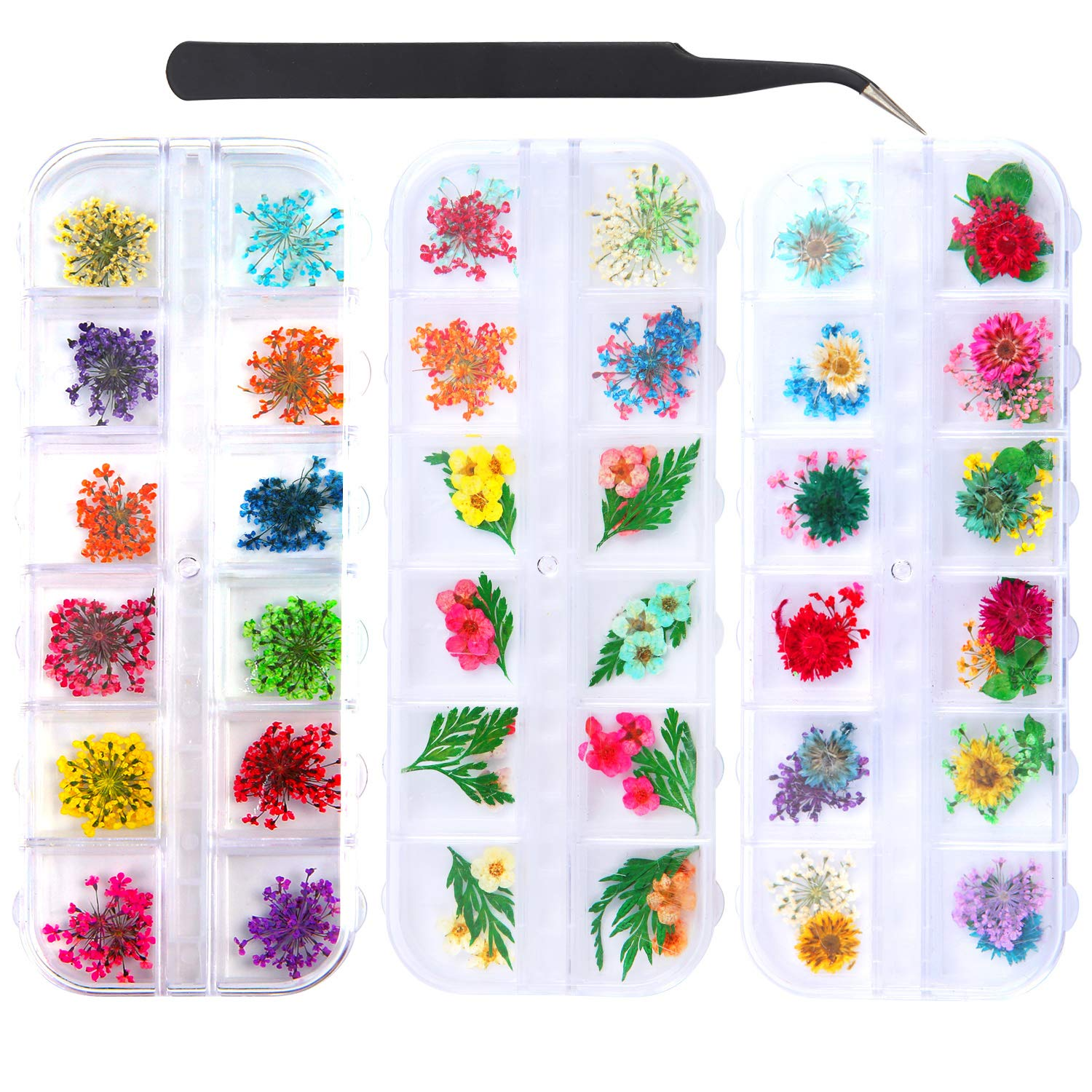 Elcoho 3 Boxes Dried Flowers for Nail Art 36 Colors Mini Nail Dried Flowers for Tips Manicure Decor with a Curved Tweezer (Pattern 1) by Elcoho