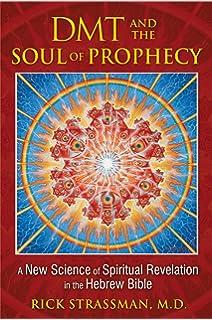 DMT THE SPIRIT MOLECULE BOOK EPUB