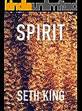 """Spirit: A """"Straight"""" Holiday Novella"""