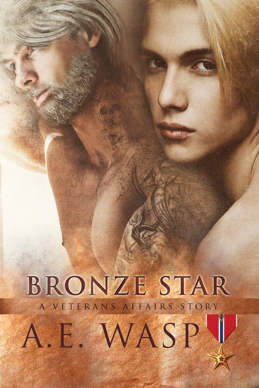 Read Online Bronze Star: A Veterans Affairs Novel (Volume 5) pdf epub