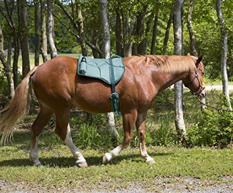 Best Friend Western Style Bareback Saddle Pad