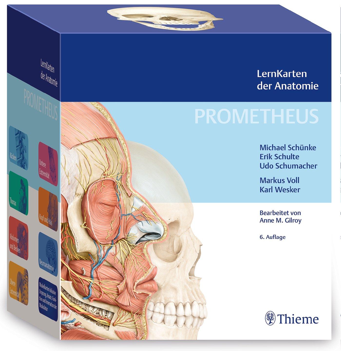PROMETHEUS LernKarten der Anatomie: Amazon.de: Michael Schünke, Erik ...