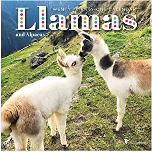 "TF PUBLISHING 2021 Llamas & Alpacas Mini Monthly Calendar - Photography- Appointment Tracker - Contacts Notes Page- Home or Office Planning/Organization in Compact Spaces - Premium Gloss Paper 7""x7"""