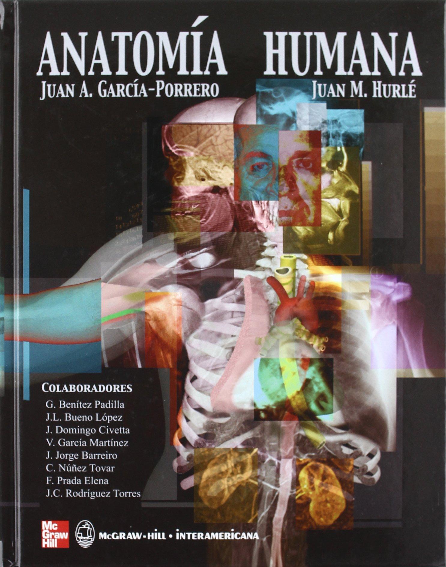 Anatomía Humana: Amazon.es: Juan García-Porrero, Juan Hurlé: Libros