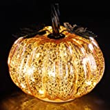 denlix Mercury Glass Pumpkin Lights Fall Decor, Battery Operated LED Timer 5.5 Inches Decorative Pumpkins, Fall Centerpieces
