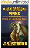 When Dragons Wake : Curse of the Bloodstone