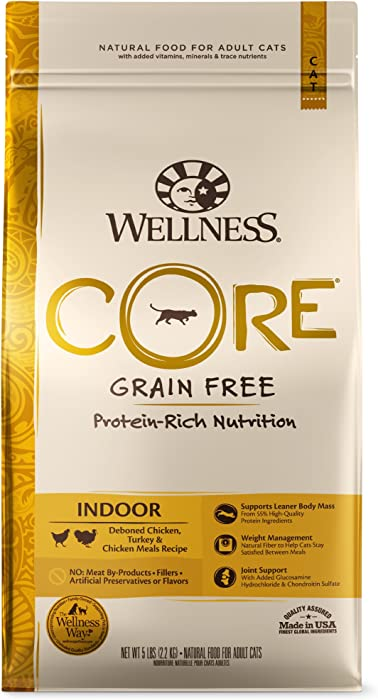 Top 9 Wellnessdrycatfood Core