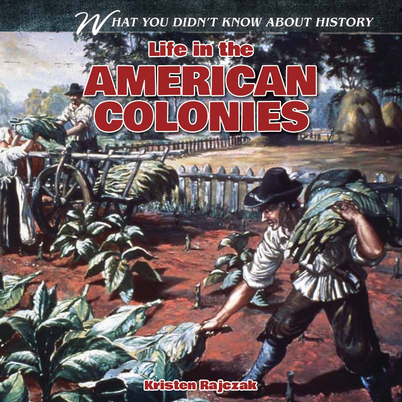 Life in the American Colonies (What You Didn't Know About History) pdf epub