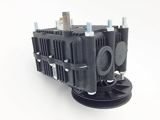 General Transmissions GT81017 Caja de cambio Rider EL63: Amazon.es ...