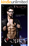 Unlawful: Episode Three (Cobra: The Gay Vigilante Series Book 3)