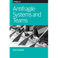 Antifragile Systems and Teams (English Edition)