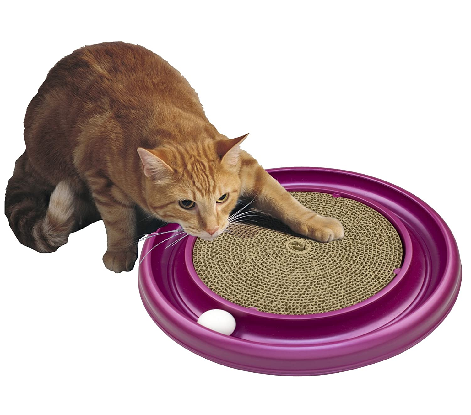 Amazon Bergan Turbo Scratcher Cat Toy Colors may vary Pet