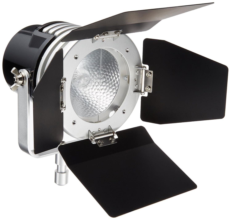 LPL ビデオライト ビデオライトVL-1300 L27430 VL-1300  B004CVKENQ