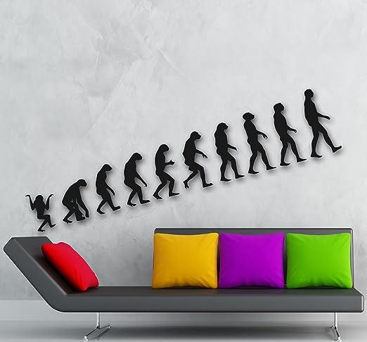 Pared pegatinas Vinilo de la evolución de Science Darwin Mono hombre Ig1326: Amazon.es: Hogar