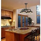 Westinghouse Lighting 6345000 Iron Hill