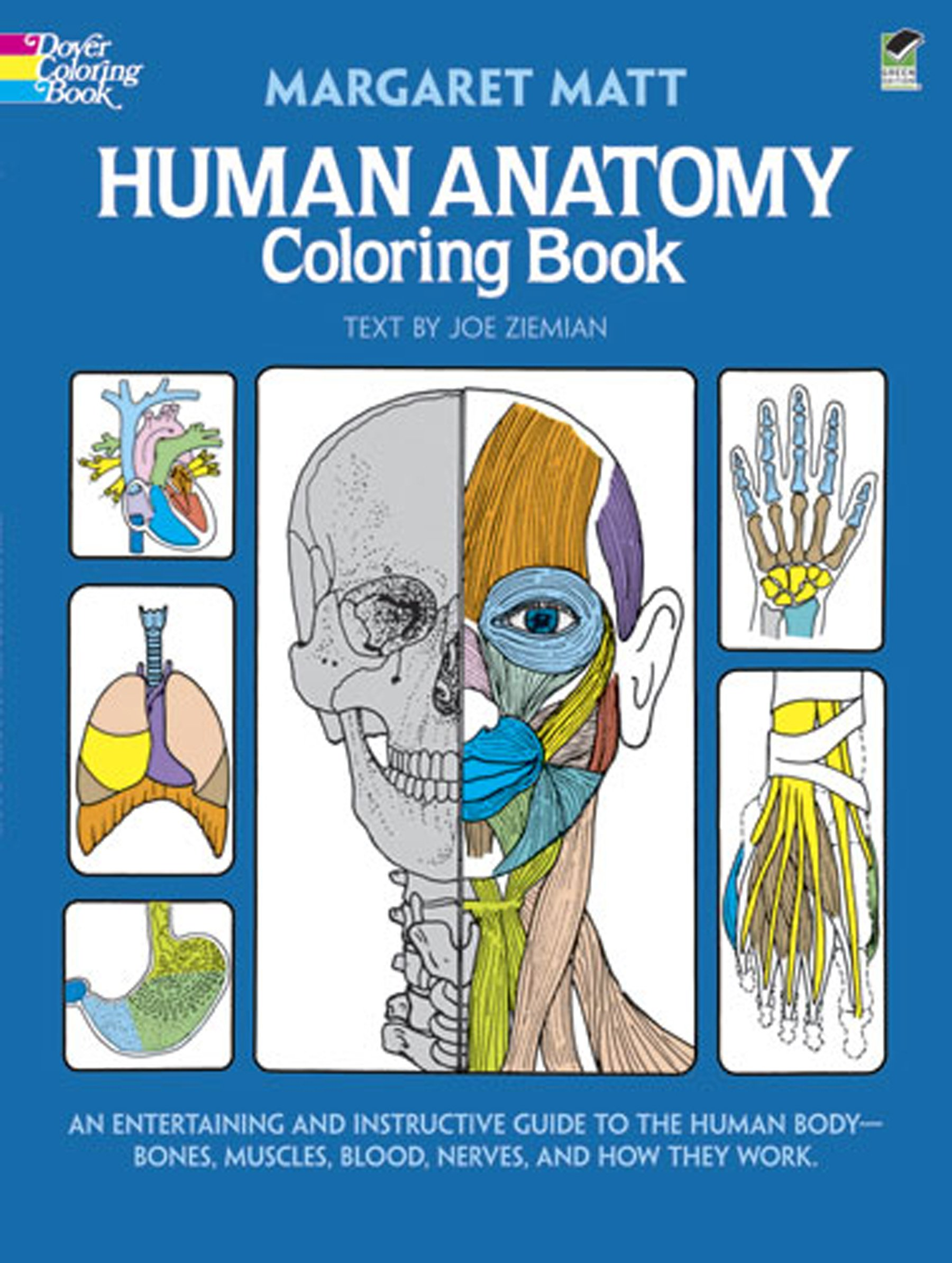 Human Anatomy Coloring Book Margaret Matt Joe Ziemian 8601404263682 Physiology Amazon Canada
