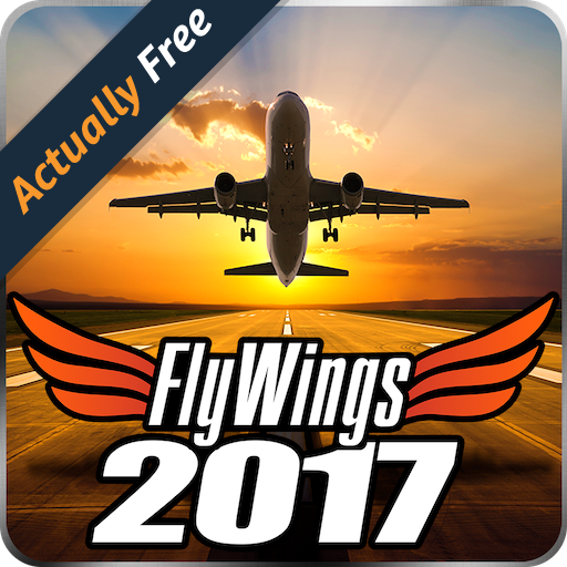 Flight Simulator FlyWings Online 2017 HD