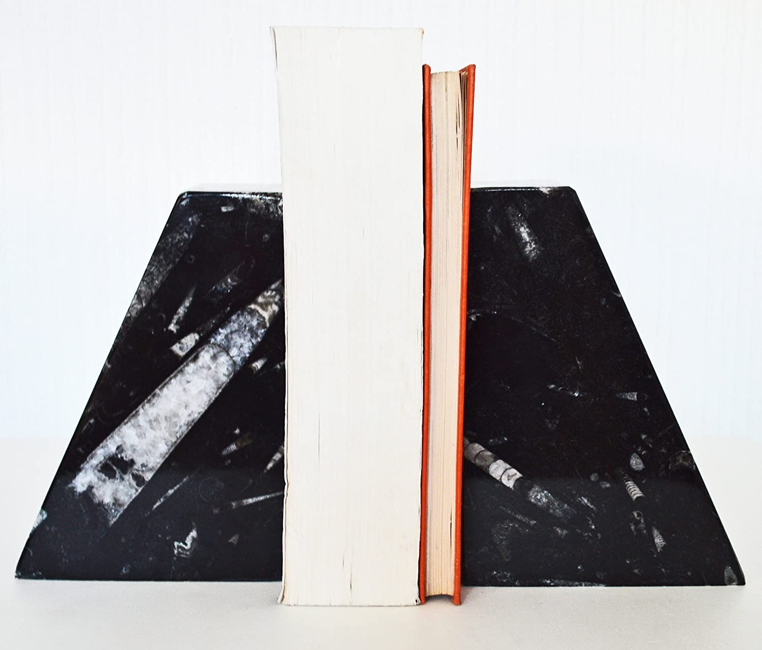 Carved /& Polished Book Ends with Ammonoids and Orthoceras Fossils throughout W12 H 16 D6 Cm Large Black Pyramid