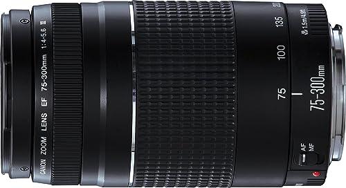 Canon EF 75-300 mm f/4.0-5.6 III Lens