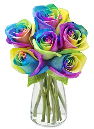 6d2235c05c38 Amazon.com : KaBloom Fresh Cut Rainbow Rose Bouquet of 6 Rainbow ...