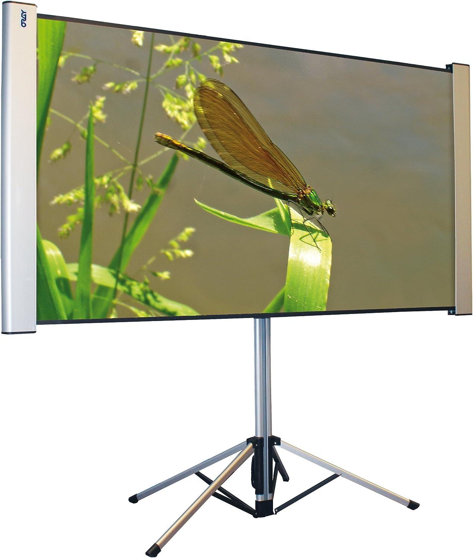 Oray Dragonfly - Pantalla de proyección portátil (101 x 180 cm), Color Gris: Amazon.es: Electrónica