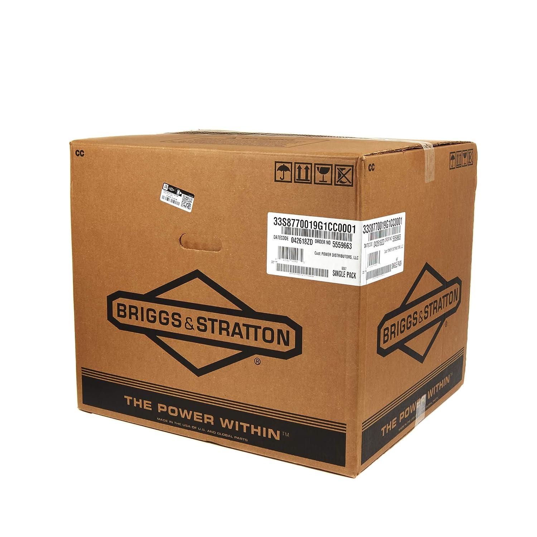 Amazon.com: Briggs & Stratton 33S877-0019-G1 Intek Series 19 ...