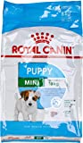 royal canin - Rc Mini Junior - Kg. 8