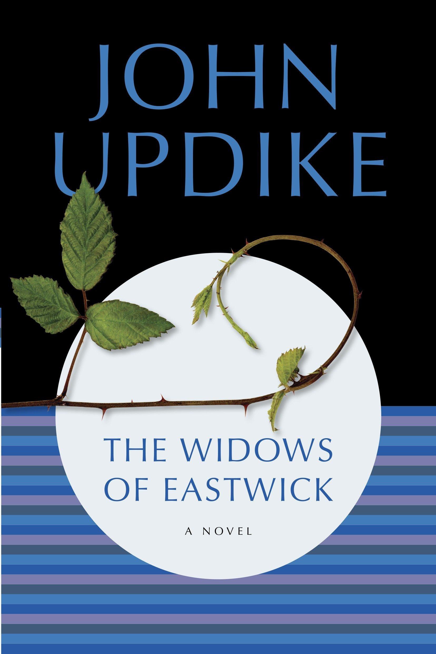 The Widows of Eastwick: A Novel ebook