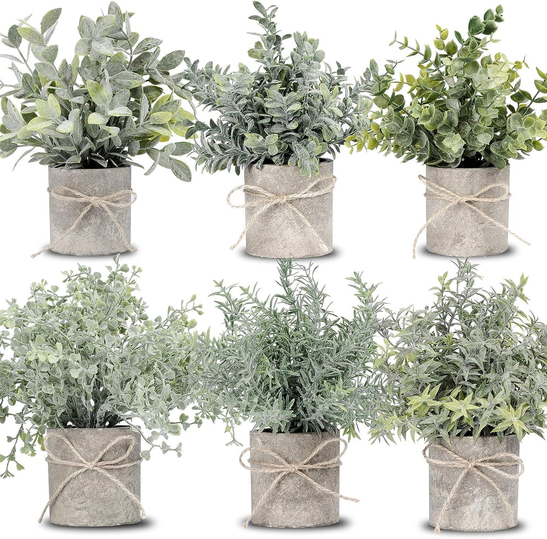 JC nateva Set of 6 Packs Mini Potted Fake Plants Faux Eucalyptus Plants Artificial Plants for Home Decor Indoor