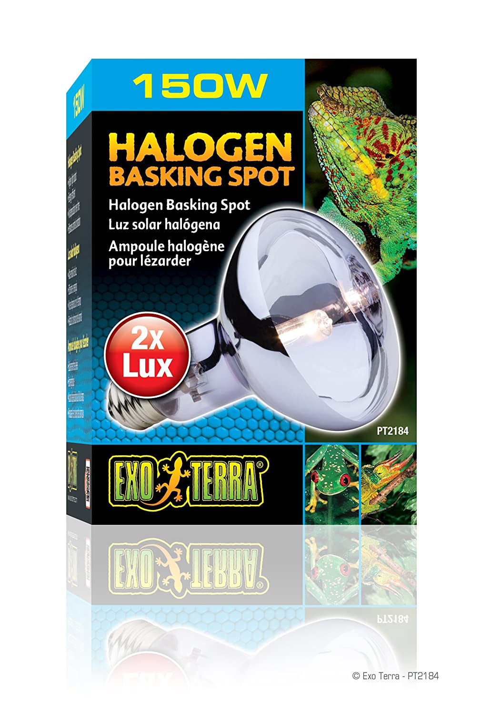 RC Hagen PT2184 Exo Terra Sun-Glo Daylight Halogen Lamp, 150W