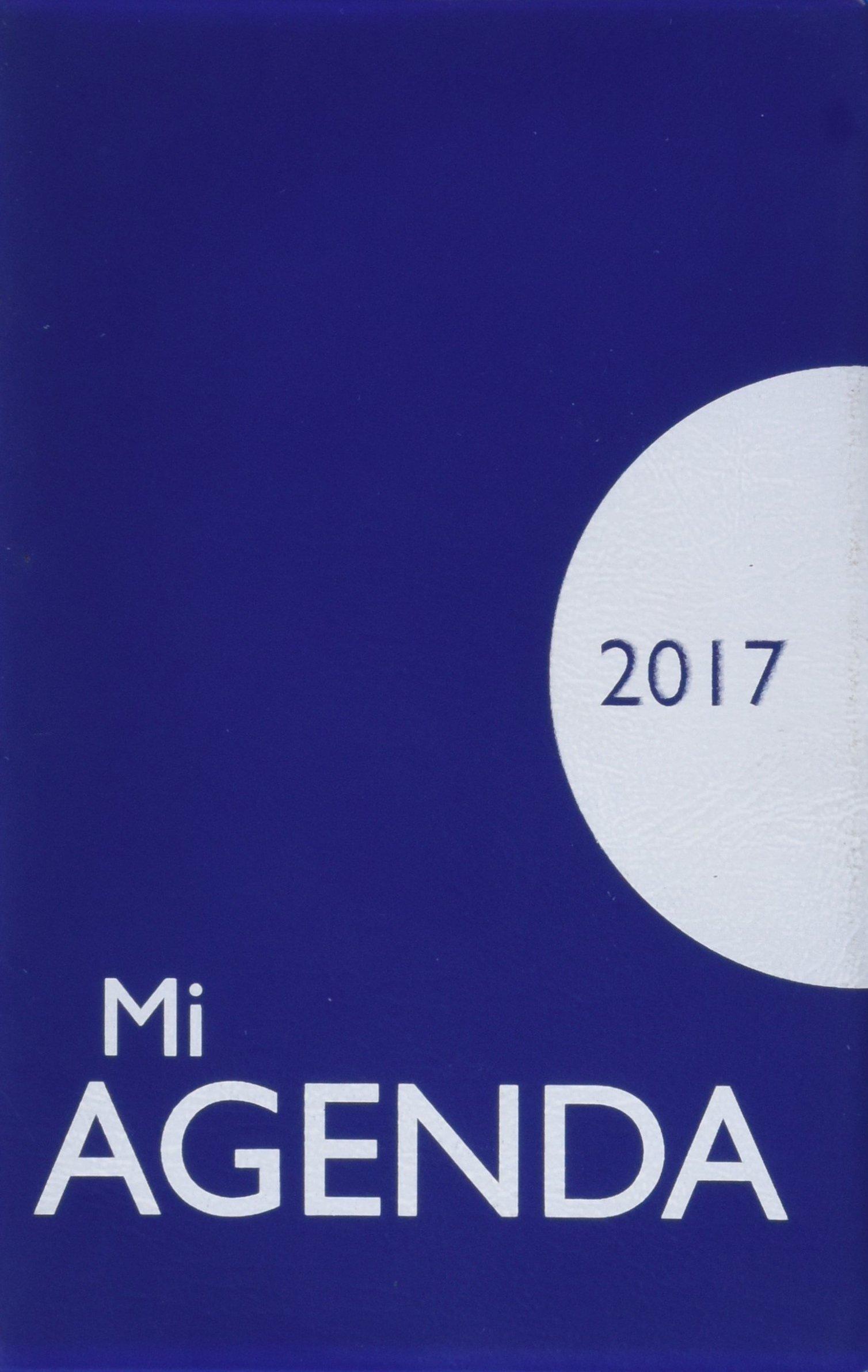 Mi agenda 2017: funda opaca: Equipo San Pablo: 9788428550642 ...