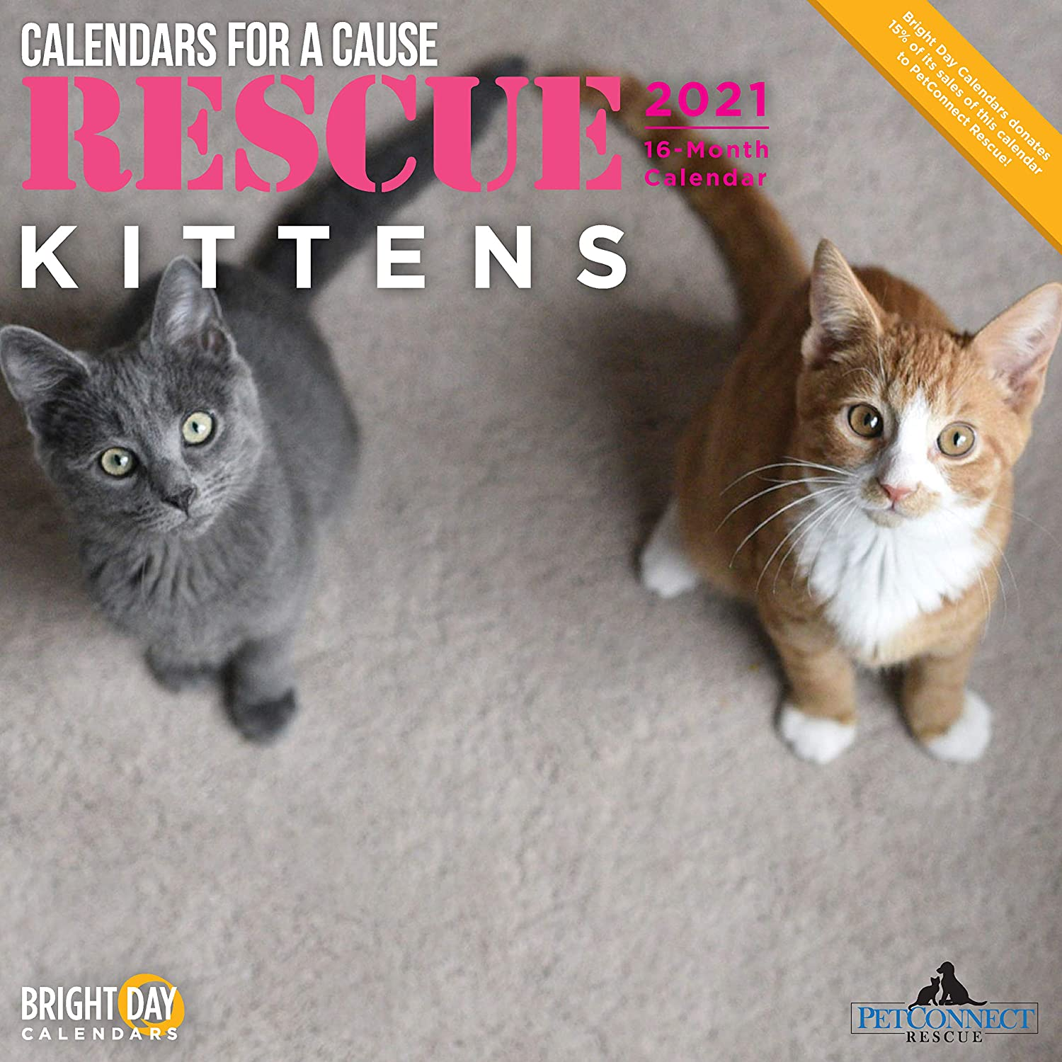 2021 Rescue Kittens Wall Calendar by Bright Day, 12 x 12 Inch, Cute Cats Calendars for a Cause
