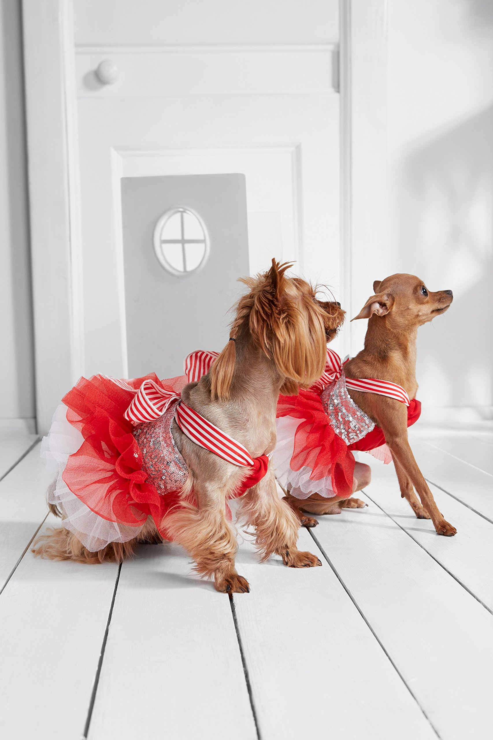 """Small Dog Tutu Dress With Sequins Ribbon Bow 4 Layer Skirt Bling Puppy Party Outfit (Toy Plus: 10"""" / 5-9 lbs, Red, White)"""