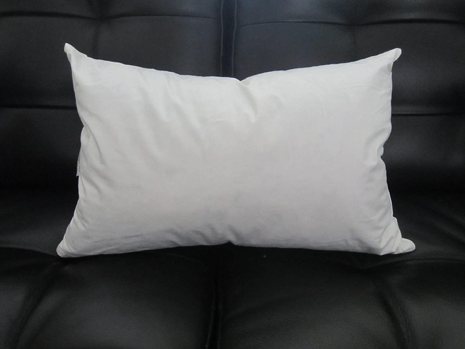 Down Sofa Pillow Inserts Conceptstructuresllc Com