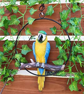 Ebros Patio Home Garden Hanging Scarlet Macaw Parrot Perching on Branch in Metal Round Ring Figurine Sculpture Nature Lovers Tropical Bird Collectors Decor 13.5