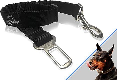 Bungee arnés de seguridad para perros - cómodo y seguro cinturón ...