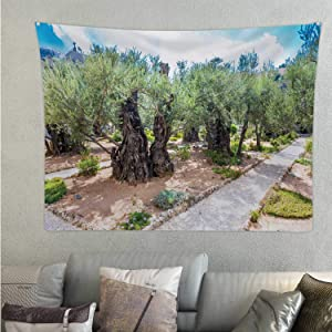 Hitecera Old Olive Trees in The Garden of Gethsemane.Famous Historic Place Jerusalem,Tapestry Israel. Wall Hanging 59.1'' x 51.1''(WxH)