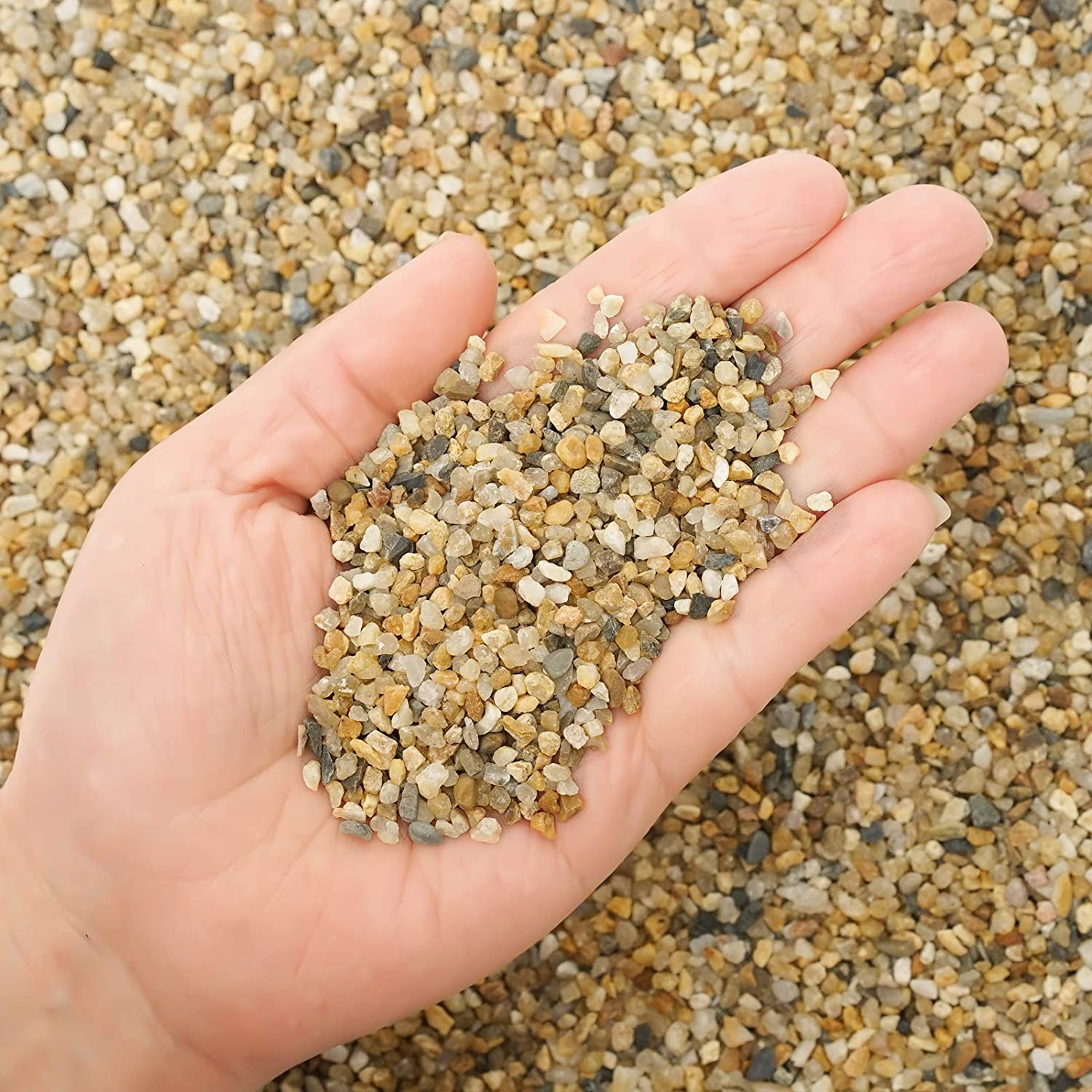2.7 lb Coarse Sand Stone - Succulents and Cactus Bonsai DIY Projects Rocks, Decorative Gravel for Plants and Vases Fillers,Terrarium, Fairy Gardening, Natural Stone Top Dressing for Potted Plants.