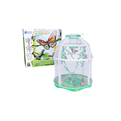 Uncle Milton Butterfly Farm Live Habitat - Observe Butterfly Lifecycle in Garden – Includes Voucher to Redeem for Caterpillars: Toys & Games
