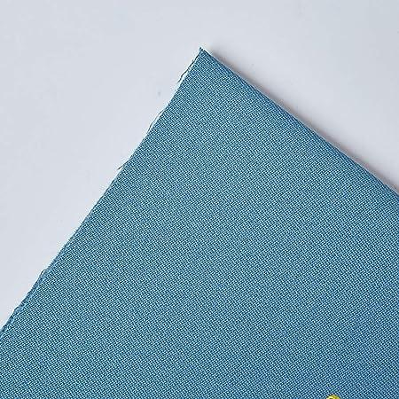 AMZH Paño de Billar Lana/Nylon Material Mantel de Billar Durable Mantel de Billar Fieltro Adecuado para mesas de Nueve Bolas 2.8 * 1.55M (Paño Base + paño Lateral): Amazon.es: Hogar