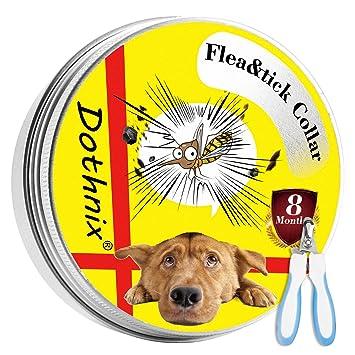 dothnix Collares Antiparasitario para Perros y Gatos contra Pulgas, Garrapatas y Mosquitos, 8 Meses de Protección, con Cortaúñas Tijera de Uñas para ...