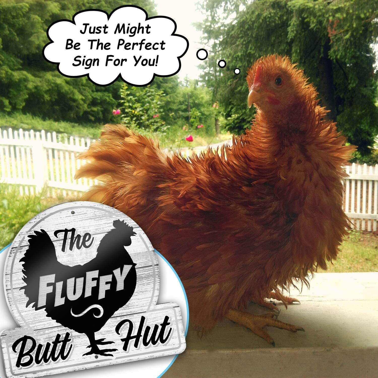 Gamefowl Barn The Fluffy Butt Hut Outdoor Shed Accessories /& Decor Rooster Shelter /& Funny Hen House PVC Plaque Bigtime Signs Chicken Coop Sign Bright Colors Clean Vector Graphic Designs