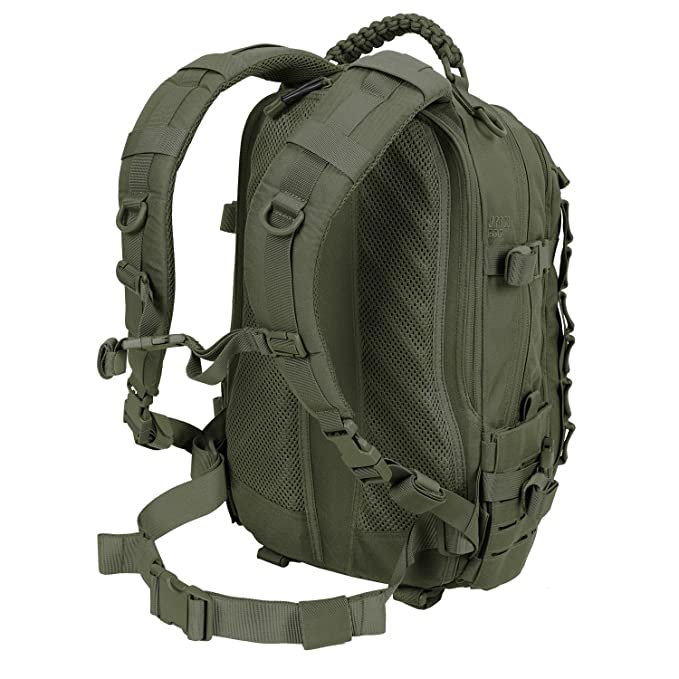 Direct Action Dragon Egg Mk2 Mochila Verde Oliva: Amazon.es: Deportes y aire libre