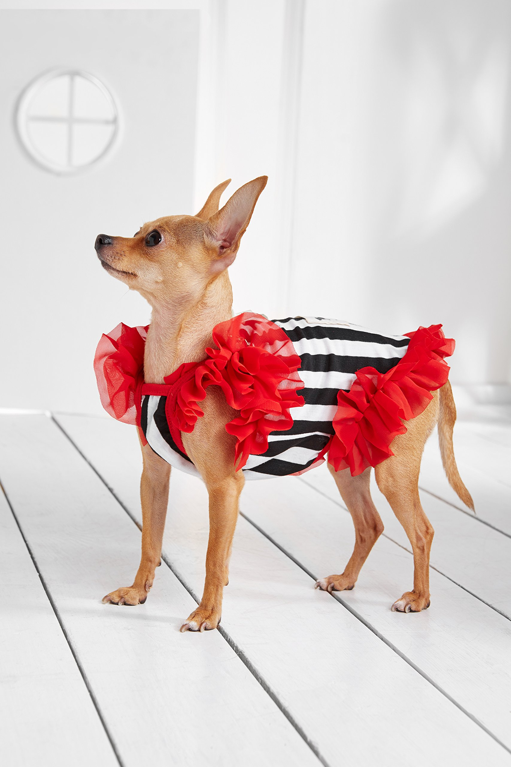 """Small Dog Striped Dress With Ruffles Satin Bow Chain Dogs Cotton Summer Clothes (Toy Plus: 10"""" / 5-9 lbs, Red, Black, White) by Nothing But Love Pets (Image #6)"""