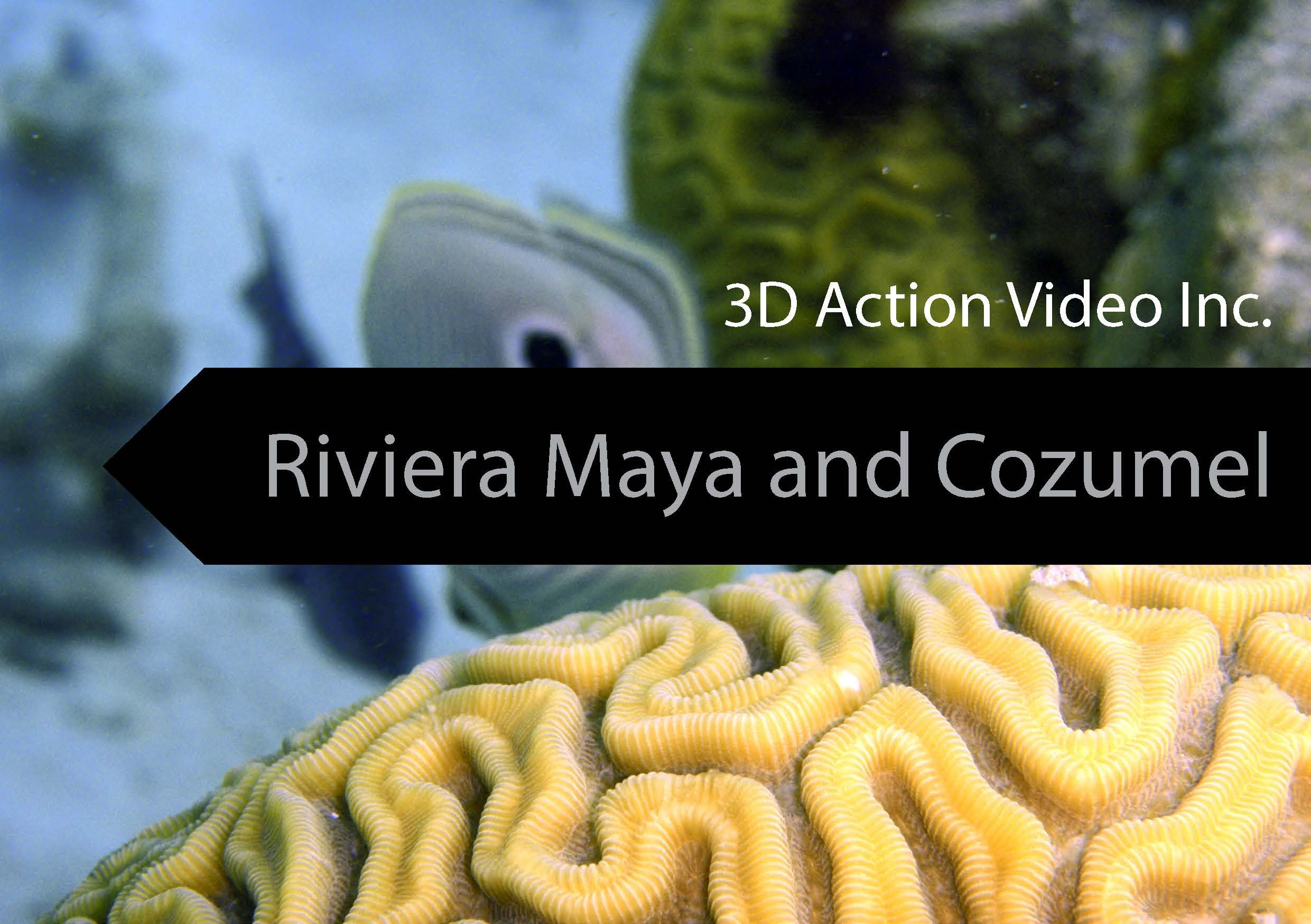 Riviera Maya and Cozumel Diving (with Franko Maps Electronic Fish ID Cards and Maps Cozumel Riviera Maya Playa Del Carmen Cenotes Maya Ruins Cancun Isla ...