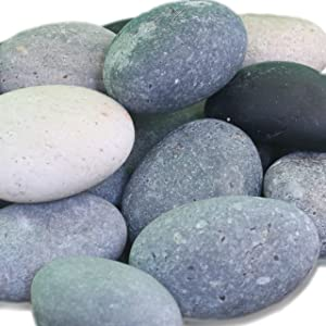 Painting Rocks by Seize the Bug, Craft Stones, Kindness Rocks, Rocks for Painting Bulk, Set of 20, 2-3 in