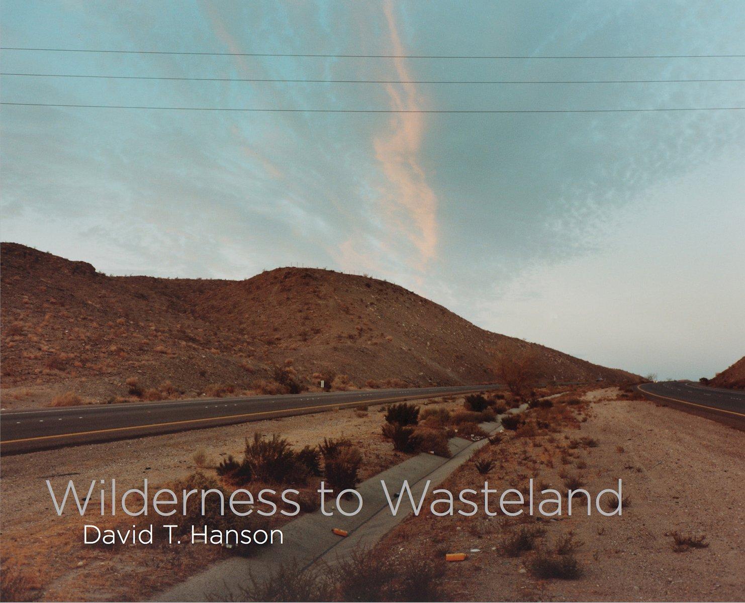Read Online Wilderness to Wasteland pdf epub