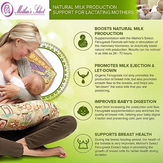 breast milk production Fenugreek and