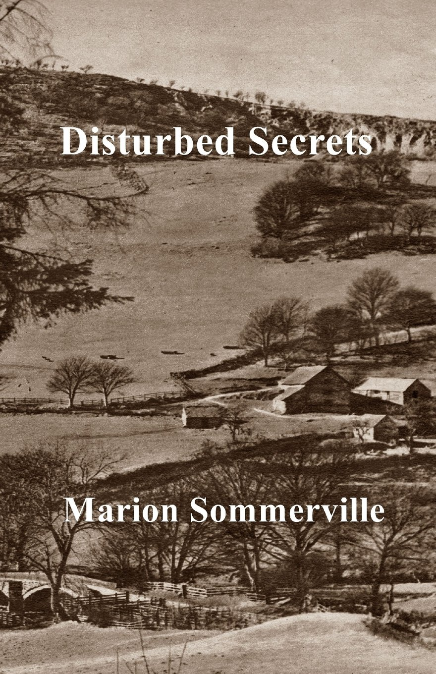 Disturbed Secrets ebook