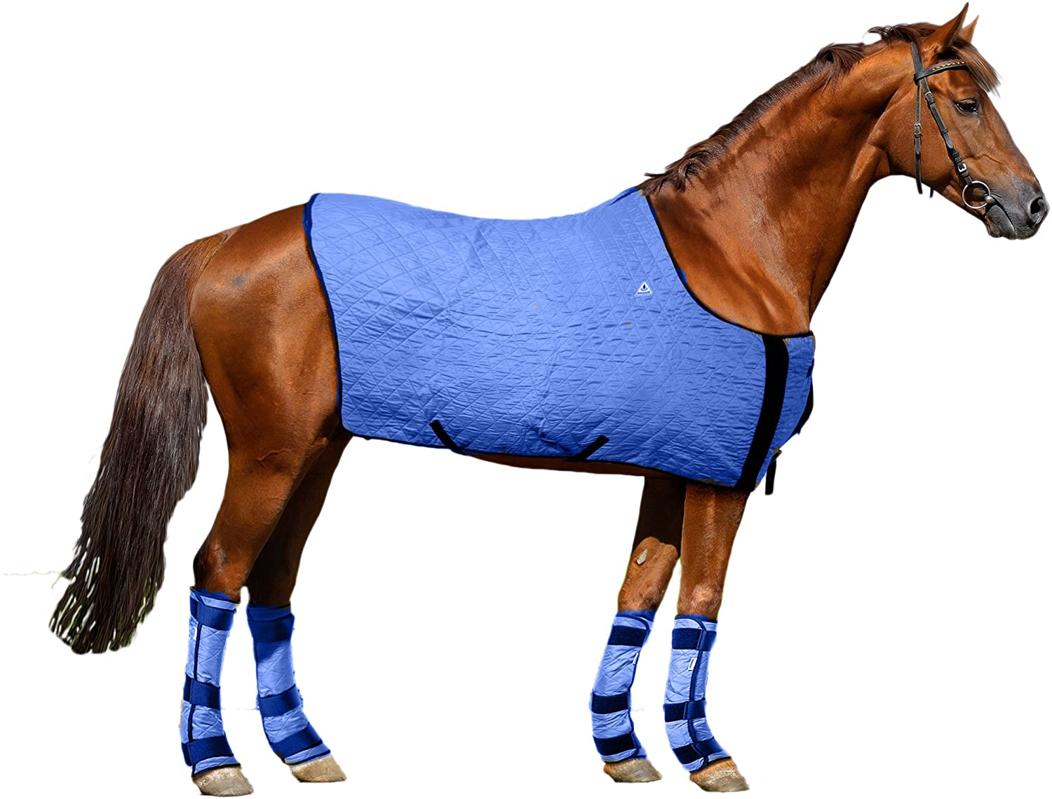 HyperKewl Evaporative Cooling Horse Blanket Large Blue Techniche International 8510L-BL